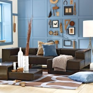 Living Room_Blue-Brown | Fabulous in Four-hundred Square Feet